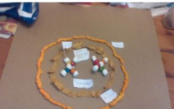 DNA Model from Madison