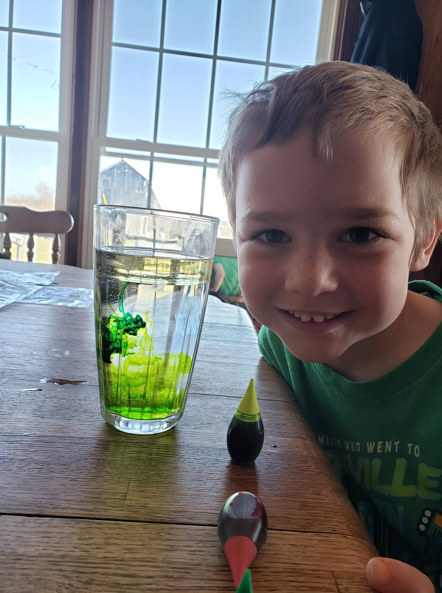 Student mixing green food coloring in water